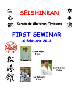 SEISHINKAN FIRST SEMINAR 2013-BUN