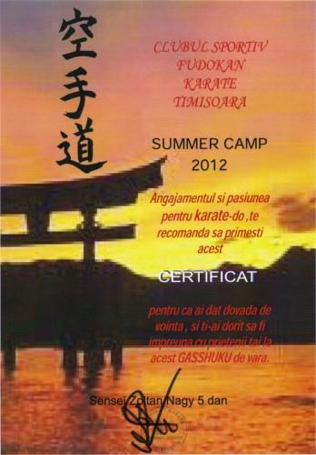 diplom summer camp 2012