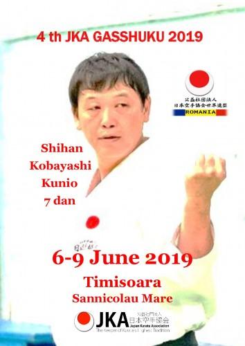 KOBAYASHI 2019 AFIS-001