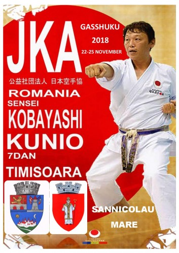 NEW KOBAYASHI 1-001