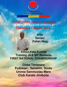 TRADITIONAL KARATE SEMINAR-cezar-page-001